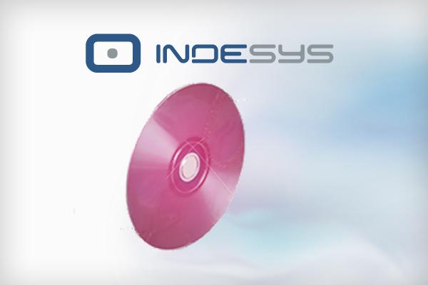 Infosys projekt www
